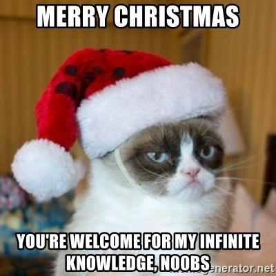 Grumpy Cat Santa Hat - MERRY CHRISTMAS YOU'RE WELCOME FOR MY INFINITE KNOWLEDGE, N00bs