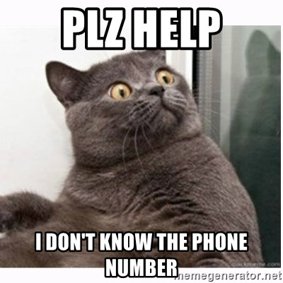 Conspiracy cat - plz help I don't know the phone number