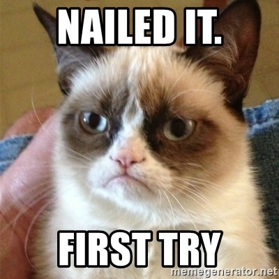 Grumpy Cat  - NAILED IT. First Try