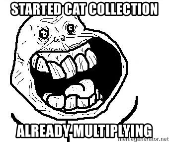 Happy Forever Alone - Started cat collection already multiplying