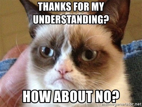 Angry Cat Meme - Thanks for my understanding? How about no?