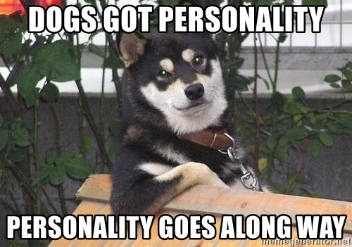 Gay Dog - Dogs got personality personality goes along way