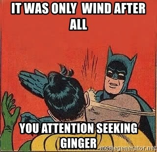 batman slap robin - it was only  wind after all you attention seeking   ginger