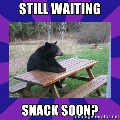 waiting bear - STILL WAITING SNACK SOON?