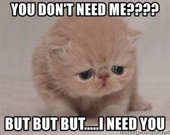 Super Sad Cat - You don't need me???? But but but.....I need you