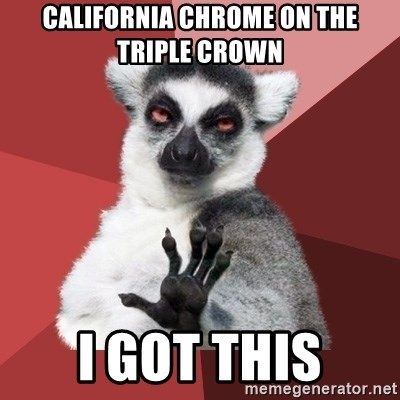 Chill Out Lemur - California Chrome on the triple crown i got this