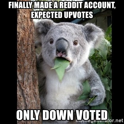 Koala can't believe it - Finally made a Reddit account, expected upvotes Only down voted