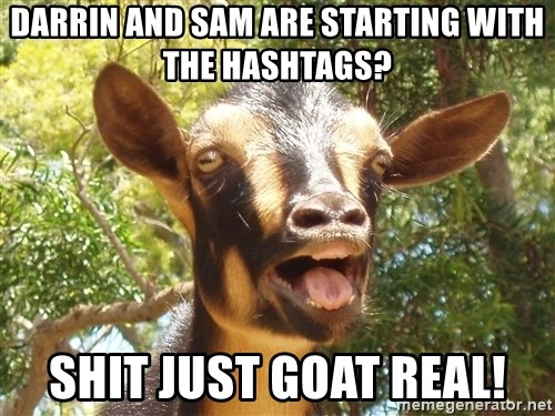 Illogical Goat - darrin and sam are starting with the hashtags? shit just goat real!