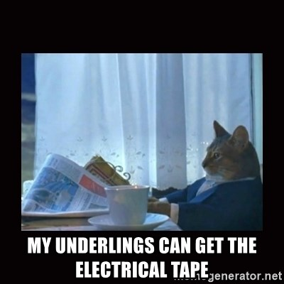 i should buy a boat cat -  My underlings can get the ELECTRICAL tape