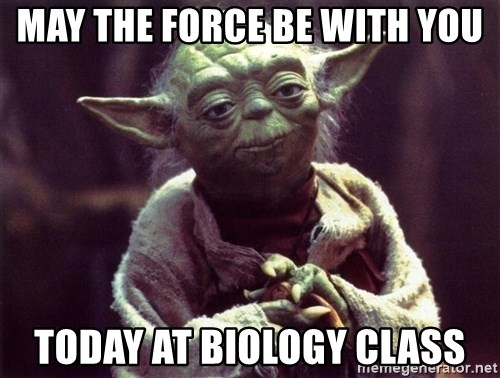 Yoda - MAY THE FORCE BE WITH YOU TODAY AT BIOLOGY CLASS