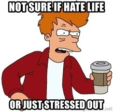 Futurama Fry - not sure if hate life or just stressed out