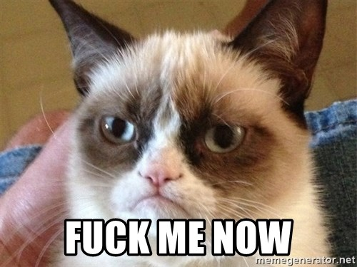 Angry Cat Meme -  Fuck me now