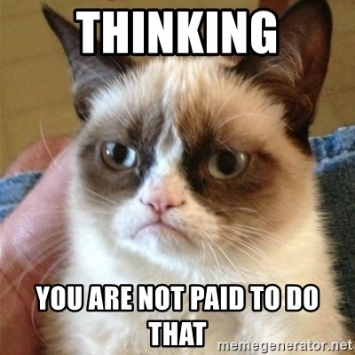Grumpy Cat  - tHINKING YOU ARE NOT PAID TO DO THAT