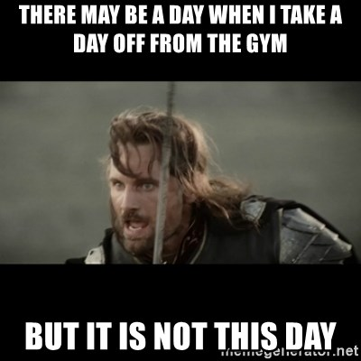 But it is not this Day ARAGORN - There may be a day when I take a day off from the gym But it is not this day
