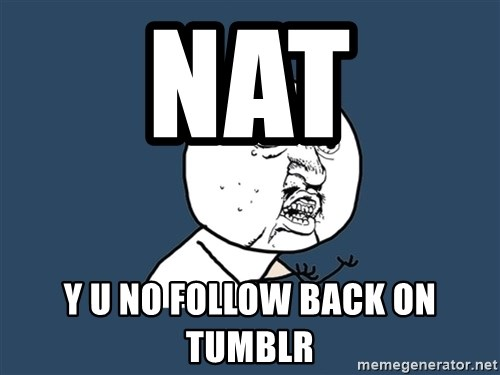 Y U No - Nat Y u no follow back on tumblr