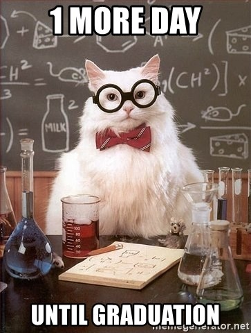 Chemistry Cat - 1 MORE DAY UNTIL GRADUATION