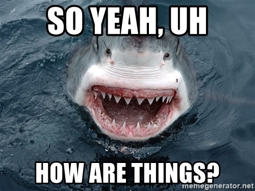 Insanity Shark - so yeah, uh how are things?