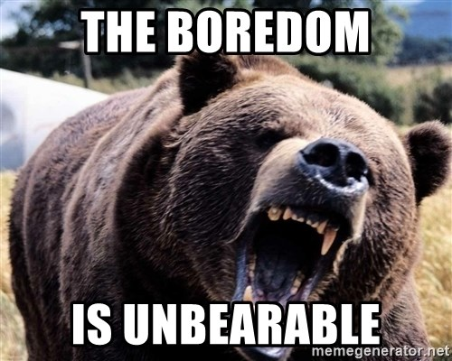Bear week - The boredom is unbearable