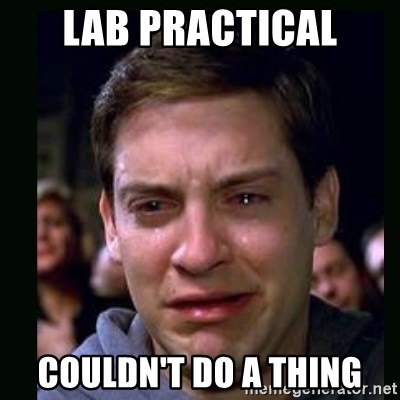 crying peter parker - Lab Practical couldn't do a thing