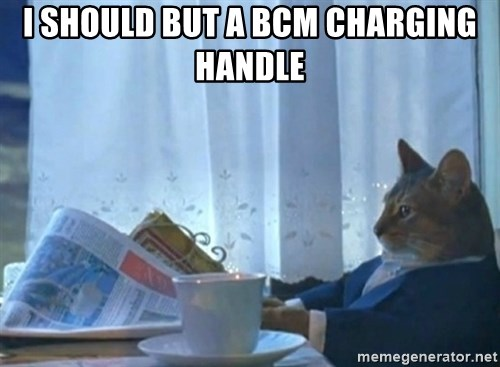 Sophisticated Cat - I should but a BCM charging handle