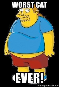 comic book guy - WORST CAT EVER!