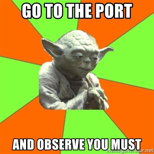 Advicefull Yoda - Go to the port  And observe you must