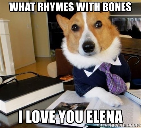 Dog Lawyer - What rhymes with bones I love you elena
