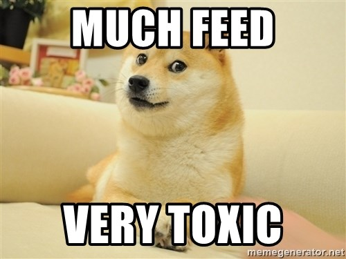 so doge - Much feed Very toxic