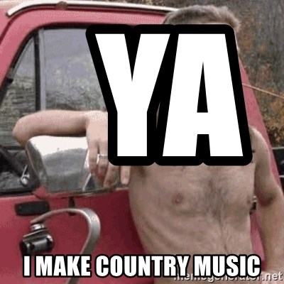 Almost Politically Correct Redneck -   Ya                    I make country music