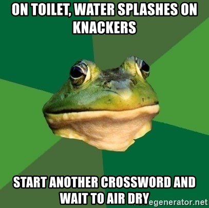 Foul Bachelor Frog - on toilet, water splashes on knackers start another crossword and wait to air dry