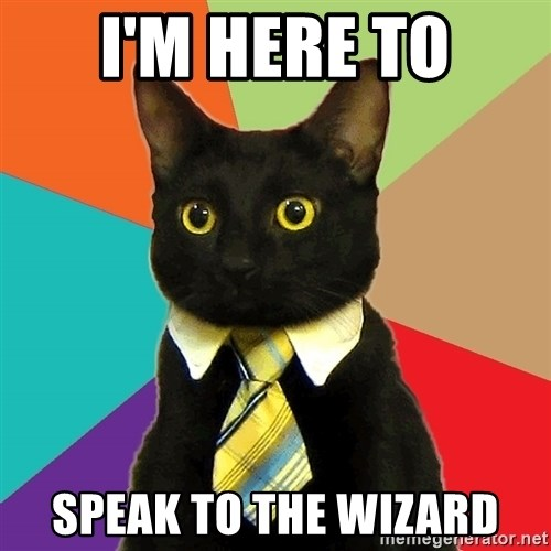 Business Cat - I'm here to Speak to the Wizard
