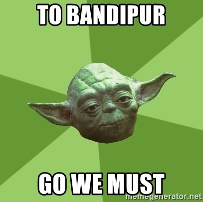 Advice Yoda Gives - to bandipur go we must