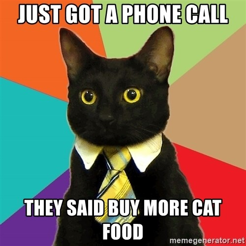 Business Cat - just got a phone call they said buy more cat food