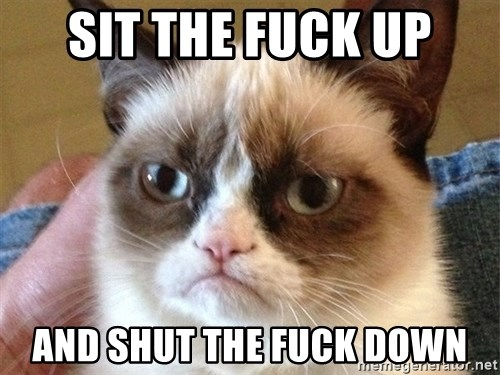 Angry Cat Meme - sit the fuck up and shut the fuck down