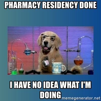 Chemistry Dog - pharmacy residency done i have no idea what i'm doing