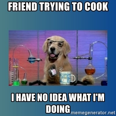 Chemistry Dog - friend trying to cook I have no Idea what I'm doing