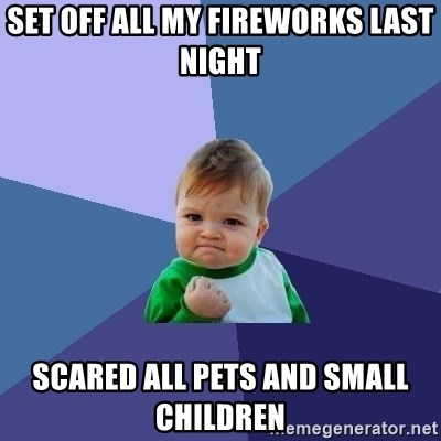 Success Kid - set off all my fireworks last night scared all pets and small children