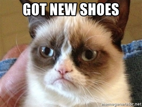 Angry Cat Meme - Got new shoes
