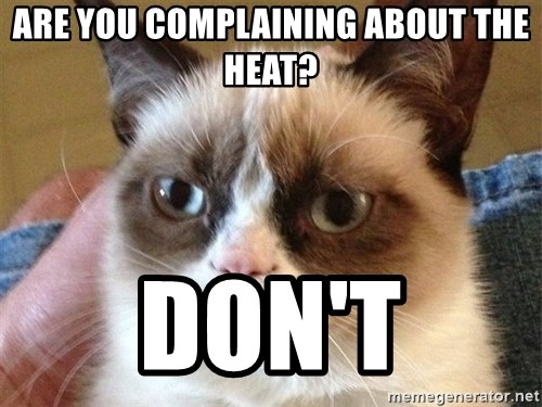 Angry Cat Meme - Are you complaining about the heat? DON'T