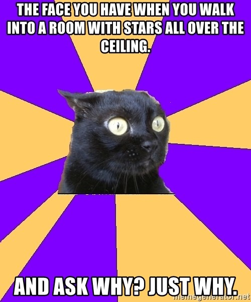 Anxiety Cat - The face you have when you walk into a room with stars all over the ceiling.  And ask why? Just why.