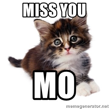 fyeahpussycats - Miss you  Mo