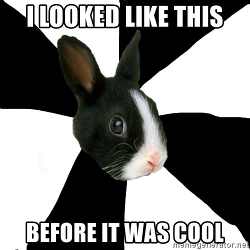 Roleplaying Rabbit - i looked like this before it was cool