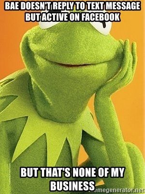 Kermit the frog - bae doesn't reply to text message but active on facebook but that's none of my business