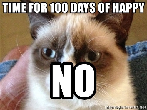Angry Cat Meme - time for 100 days of happy no