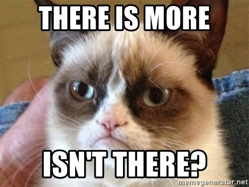 Angry Cat Meme - There is more isn't there?