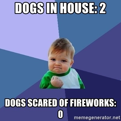 Success Kid - Dogs in house: 2 Dogs scared of fireworks: 0