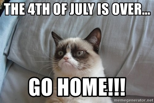 Grumpy cat good - The 4th of July is over... GO HOME!!!