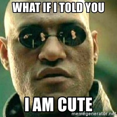 What If I Told You - What if I told you I am cute