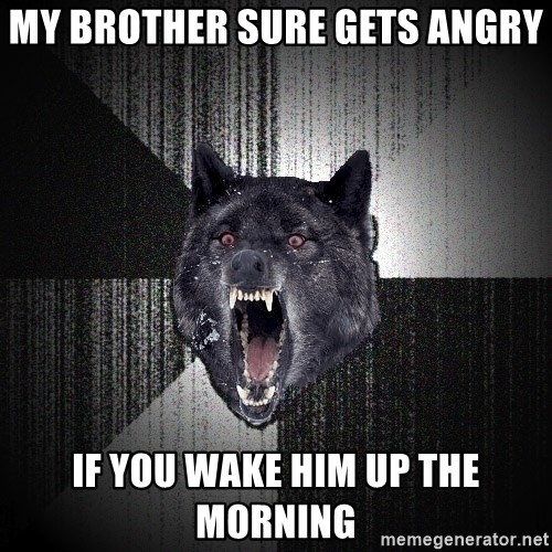 Insanity Wolf - My brother sure gets angry If you wake him up the morning