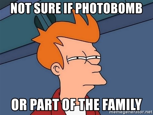 Futurama Fry - Not sure if photobomb or part of the family